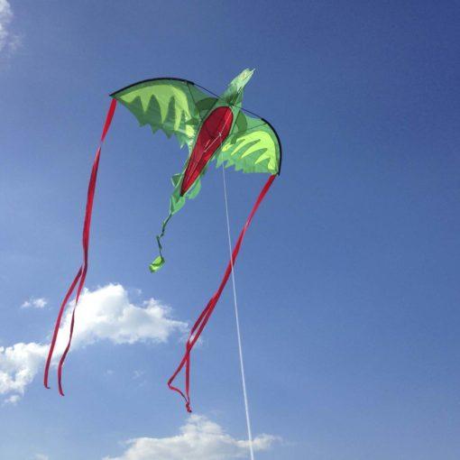 30217 Kite Wingeddragon Insky 2000x2000