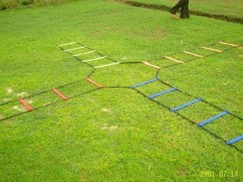 Agillity Ladder 2