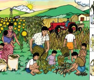 Agriculture Poster Rgs Stp08