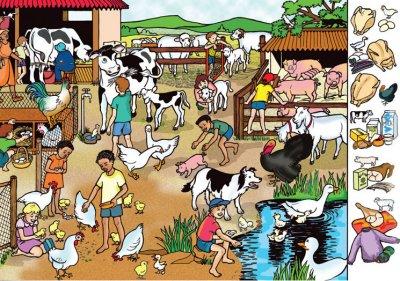 Farm Poster Rgs Stp05