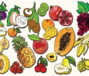 Fruit Poster Rgs Stp10