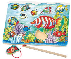 Magnetic Fishing Puzzle Rgs58423