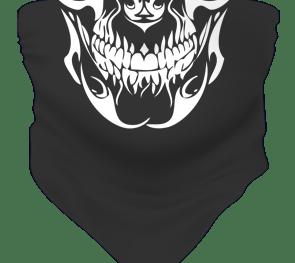 Skull Fb Sks 02 (web Format)