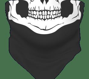 Skull Fb Sks 03 (web Format) Grey