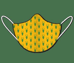 Springbok 4