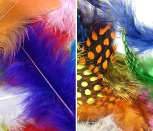 Standard Feathers