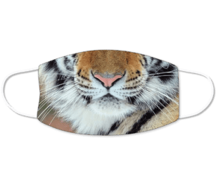 Tiger Mouth