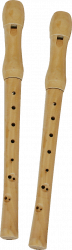 Wooden Recorder Rgs150110